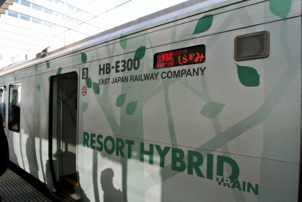 五能線をリゾート列車で_a0148206_10253583.jpg