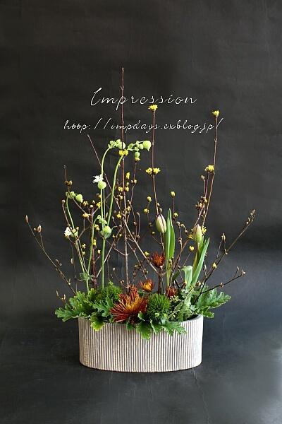定期装花から スプレーマム:チスパ_a0085317_15551829.jpg