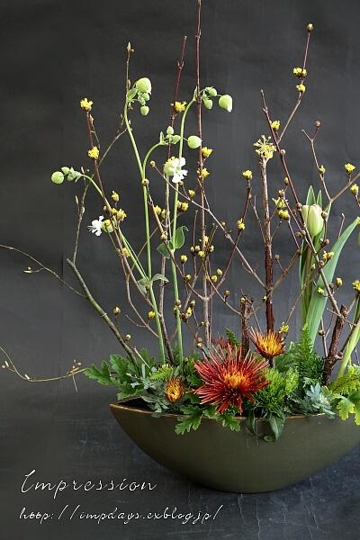 定期装花から スプレーマム:チスパ_a0085317_15552818.jpg