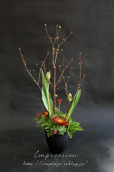 定期装花から スプレーマム:チスパ_a0085317_15553527.jpg