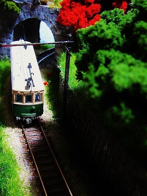 盆ラマレイアウト「黄昏の小径」シリーズその2京町家_f0227828_05225992.jpg