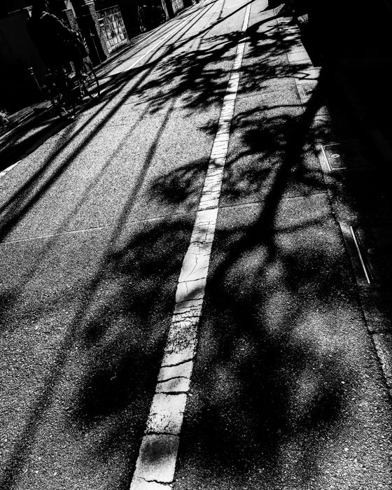 杉並区下井草 / iPhone 8_c0334533_23112109.jpg