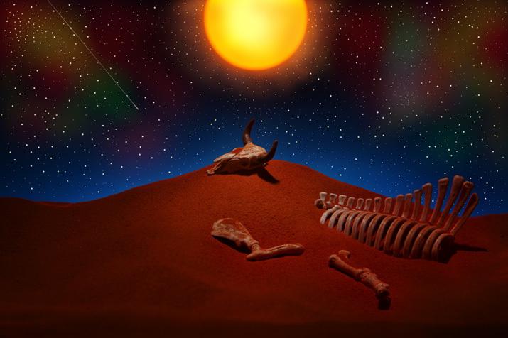転生の砂丘3〜神秘的な光景_b0175635_16201644.jpg