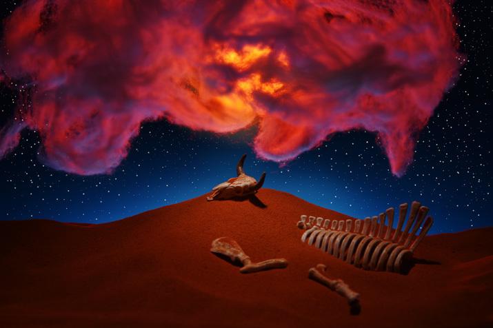 転生の砂丘3〜神秘的な光景_b0175635_16203043.jpg