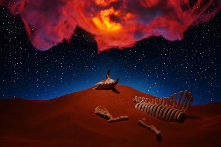 転生の砂丘3〜神秘的な光景_b0175635_16203307.jpg