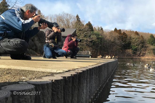 初心者さんじゃなくても撮影会 in 真岡井頭公園_e0227942_22275735.jpg
