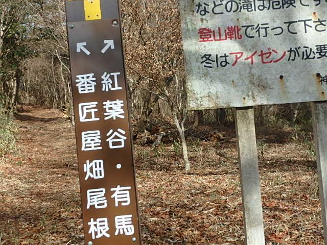 紅葉谷 リハビリ おじさんの休日_f0334143_204748100.jpg