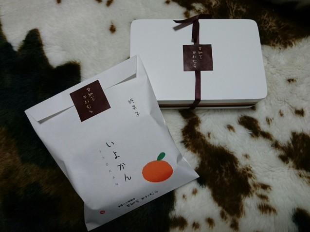 ROTTI(ロッティ)(金沢市鞍月)_b0322744_20042855.jpg