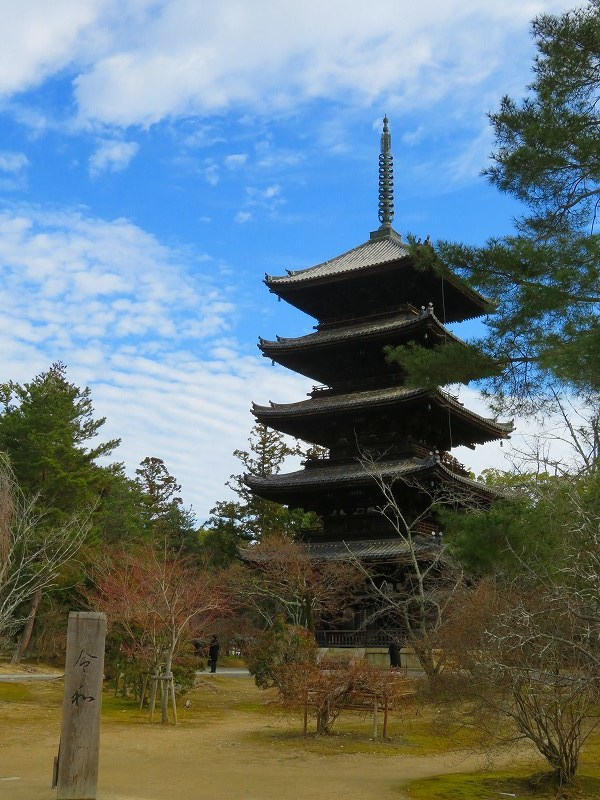 仁和寺の伽藍20200122_e0237645_16405649.jpg