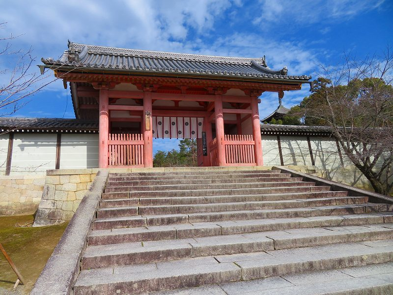 仁和寺の伽藍20200122_e0237645_16422456.jpg