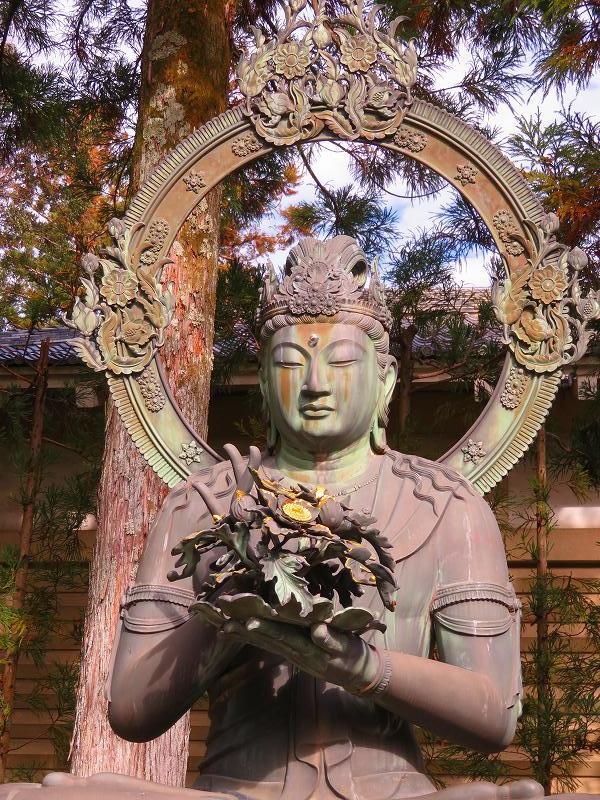 仁和寺の伽藍20200122_e0237645_16422481.jpg