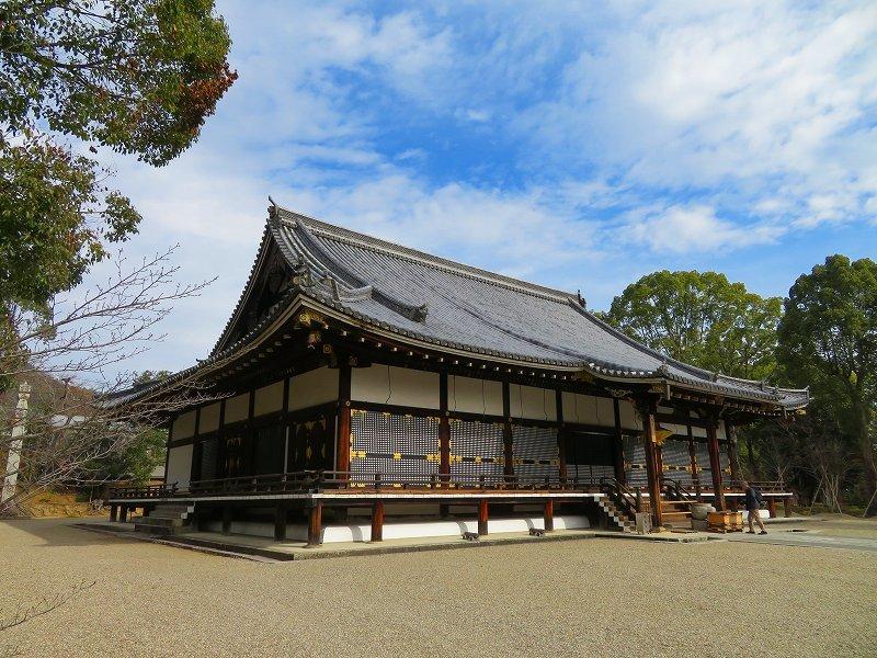 仁和寺の金堂伽藍模様20200122_e0237645_16501524.jpg