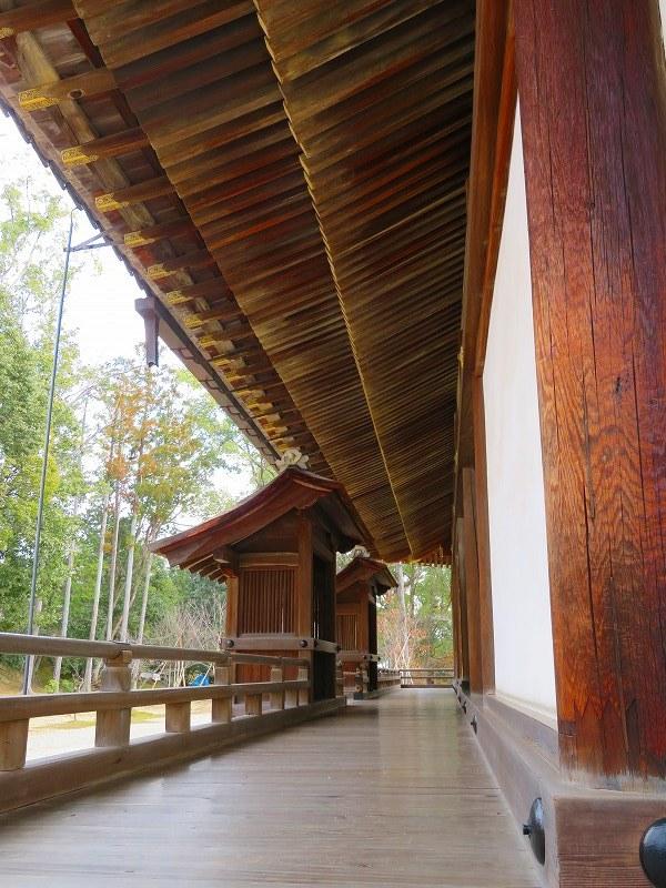 仁和寺の金堂伽藍模様20200122_e0237645_16501600.jpg