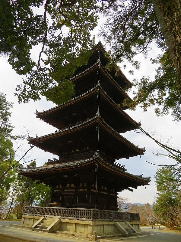 仁和寺の五重塔20200122_e0237645_16532307.jpg