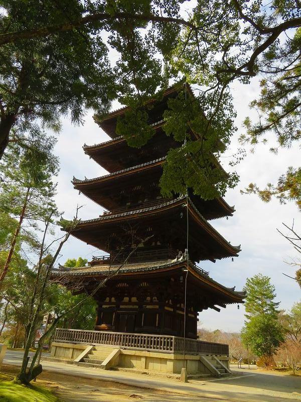 仁和寺の五重塔20200122_e0237645_16532390.jpg