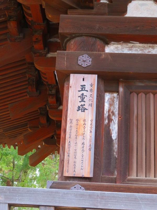 仁和寺の五重塔20200122_e0237645_16532400.jpg
