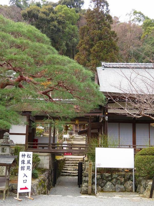 松尾大社(平安京西の守り「白虎」)20200122_e0237645_22131274.jpg