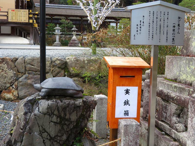 松尾大社の神使(鯉と亀)20200122_e0237645_22270744.jpg