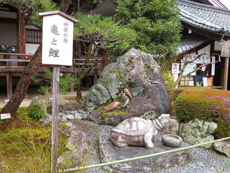 松尾大社の神使(鯉と亀)20200122_e0237645_22270771.jpg