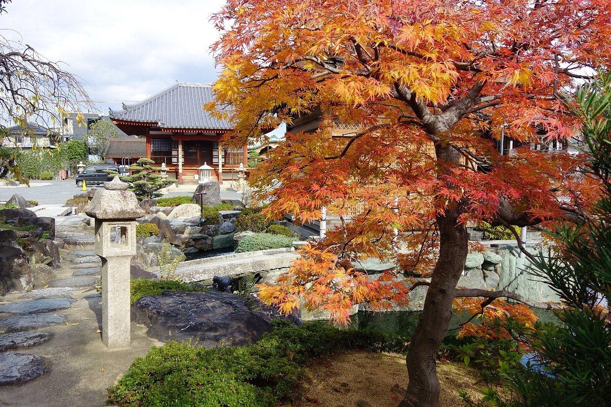 秋の総持寺庭園_c0112559_08415325.jpg