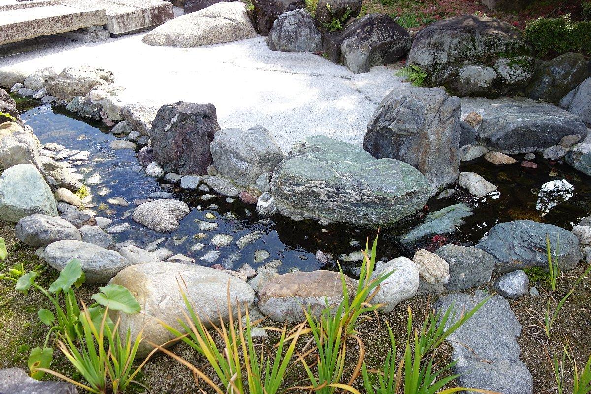 秋の総持寺庭園_c0112559_08434204.jpg
