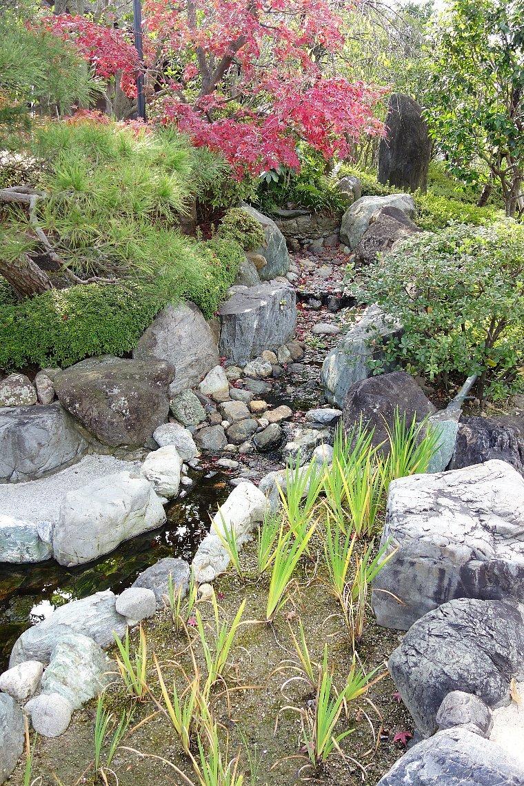 秋の総持寺庭園_c0112559_08440295.jpg