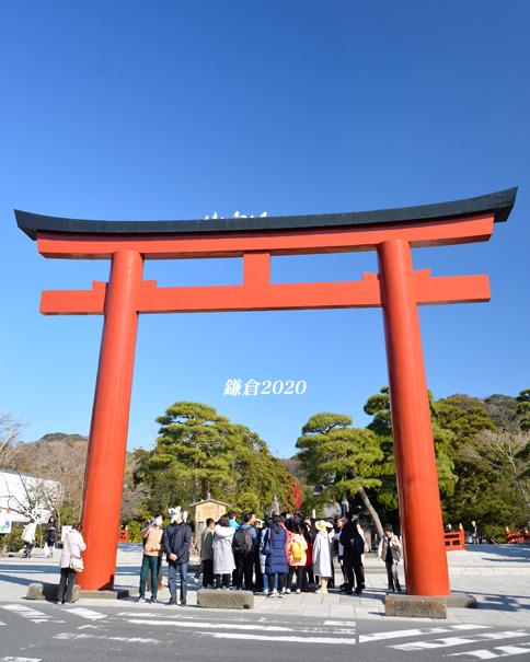 今はこれ!『そうだ 鎌倉、行こう』_d0251161_08522368.jpg