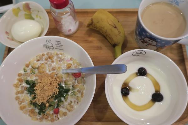 ブログ村のログイン 1ヵ月ぶりにお弁当を作りました_b0404662_17084263.jpg