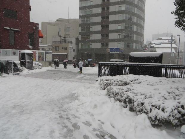 雪景色いろいろ_d0193569_09194317.jpg