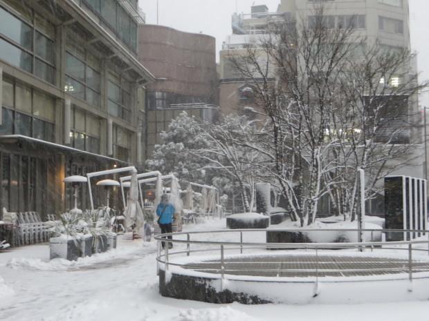 雪景色いろいろ_d0193569_09195055.jpg