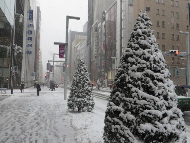 雪景色いろいろ_d0193569_09195490.jpg