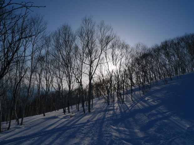 雪景色いろいろ_d0193569_09304316.jpg