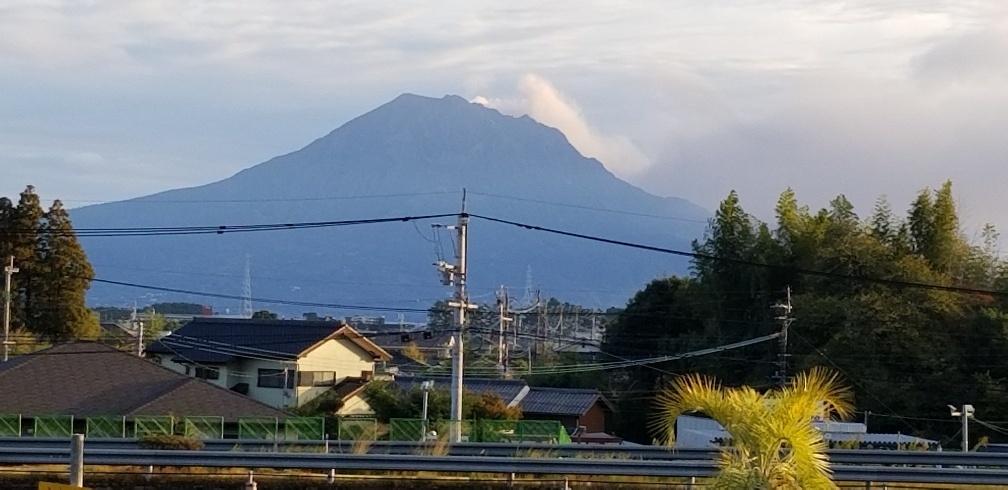 2019社員旅行 鹿児島 指宿 知覧へ行ってきました!_e0247169_12574804.jpg