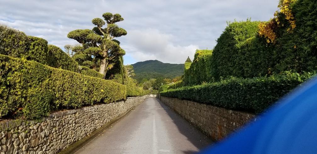 2019社員旅行 鹿児島 指宿 知覧へ行ってきました!_e0247169_12584437.jpg