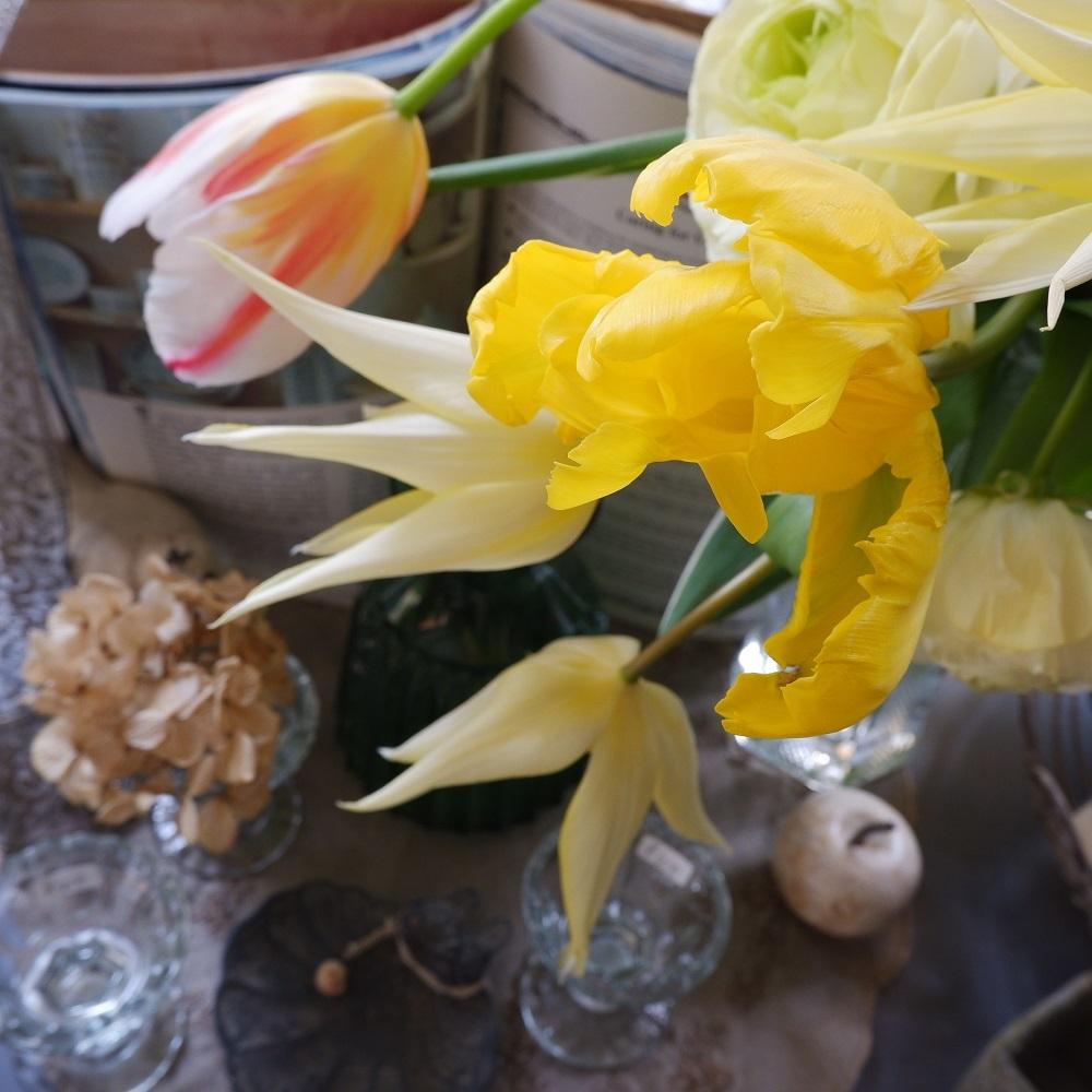 オークリーフ(今日のお店の花たち)_f0049672_16270081.jpg