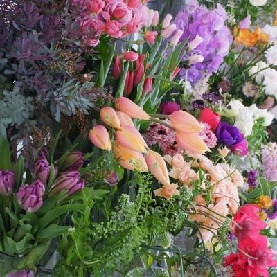 オークリーフ(今日のお店の花たち)_f0049672_16300234.jpg