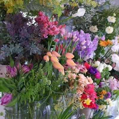 オークリーフ(今日のお店の花たち)_f0049672_16300816.jpg