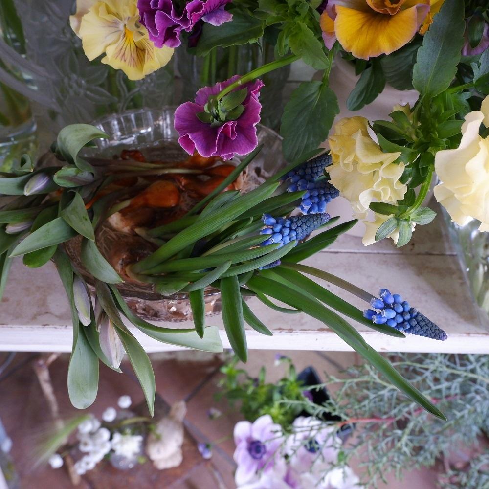オークリーフ(今日のお店の花たち)_f0049672_16301745.jpg