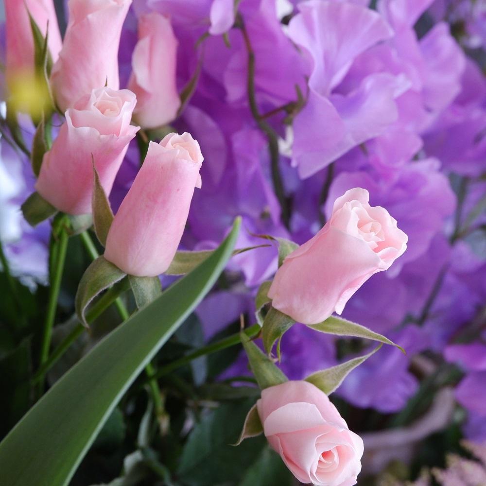オークリーフ(今日のお店の花たち)_f0049672_16303129.jpg