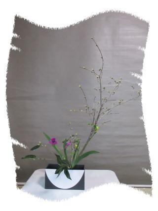 春近かし?_b0189573_14273575.jpg