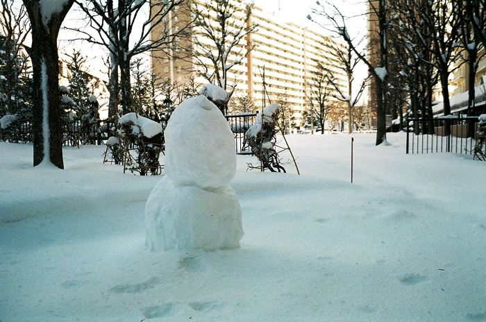 昨日の雪と雪だるまを作る姉妹_c0182775_17234087.jpg