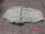 獅子丸のウンチポケット_b0231886_19364838.jpg