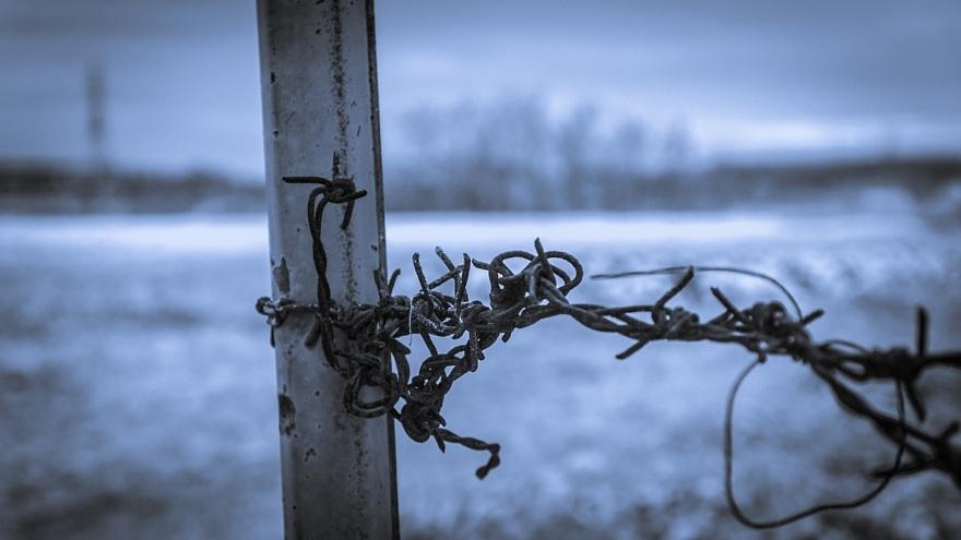 むっつりとした冬景色_d0353489_17150880.jpg