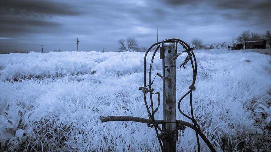 むっつりとした冬景色_d0353489_17163315.jpg