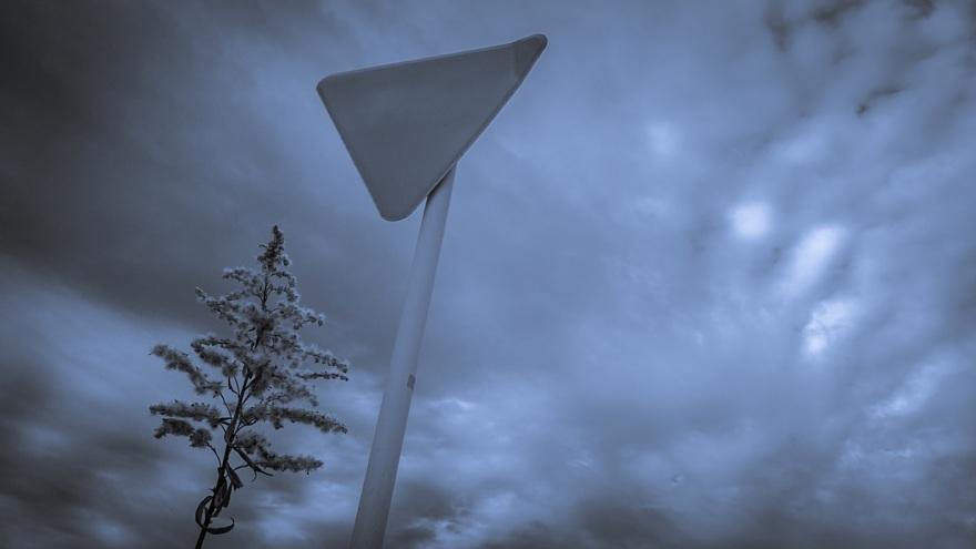 むっつりとした冬景色_d0353489_17164041.jpg
