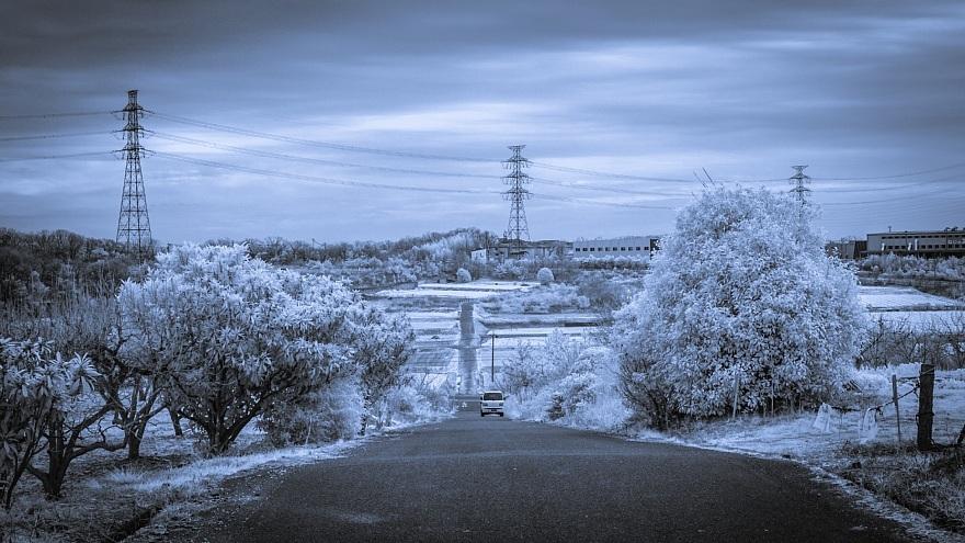 むっつりとした冬景色_d0353489_17164828.jpg