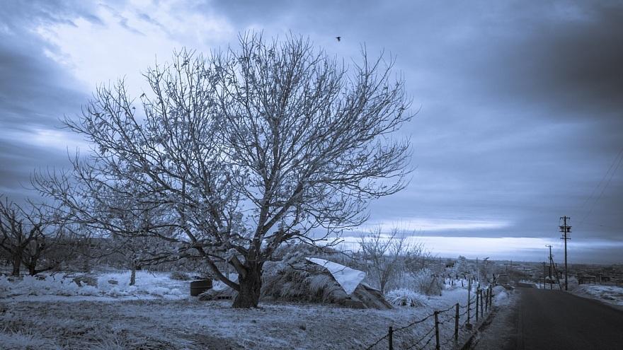 むっつりとした冬景色_d0353489_17165524.jpg