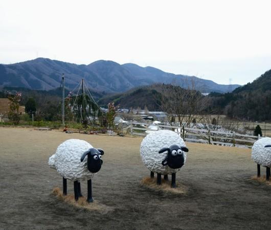 滋賀県米原市 ローザンベリー多和田さんへ行って来ました!_b0393592_09232349.jpg