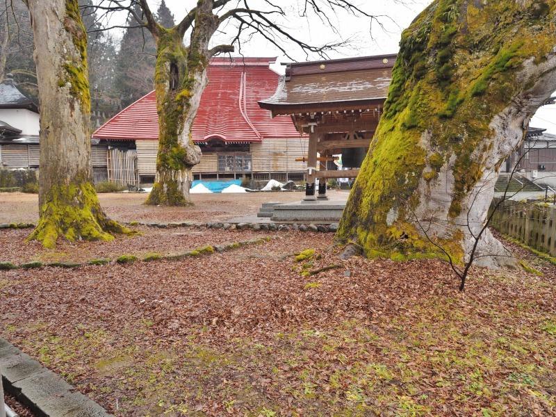 この季節に雪の無い毘沙門堂へ行ってみました_c0336902_21254637.jpg