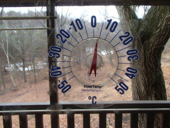 真冬だというのに_f0064906_15295086.jpg